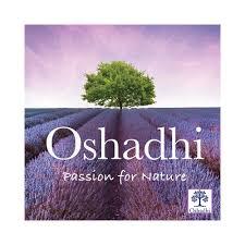 Oshadhi 阿輸吠陀能量油